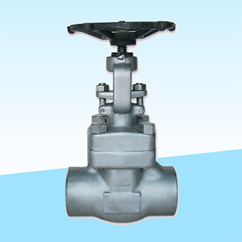 forged-steel-gate-valve-ipc