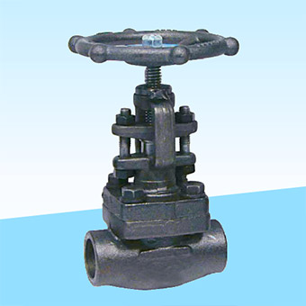 forged-steel-globe-valve-ipc