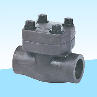 lift-check-valve-ipc