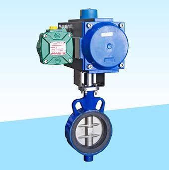 ipc-centric-butterfly-valve